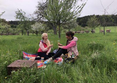 Picknick Streuobstwiese